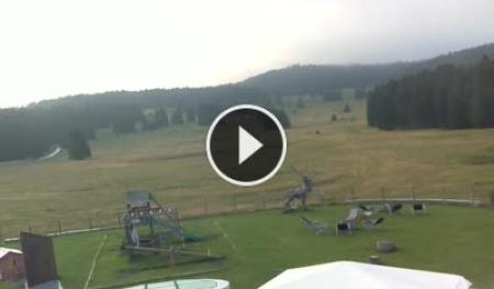 Webcam Lavarone Ski Area a Millegrobbe