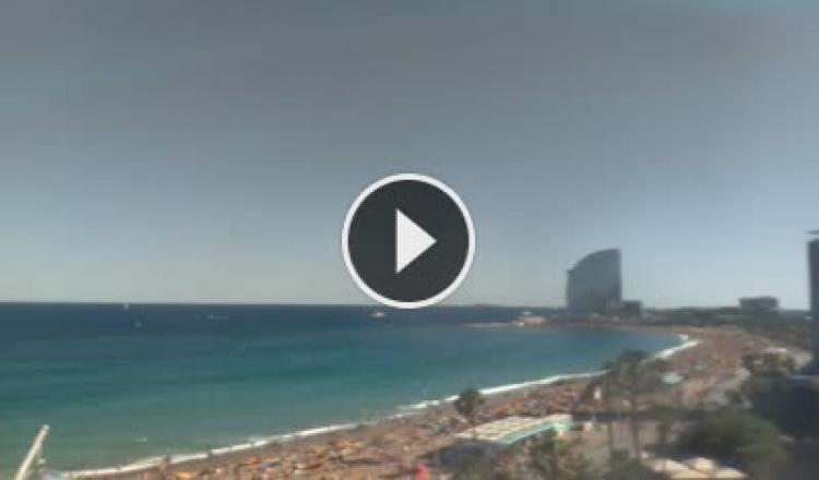 Vista en vivo de la playa y del Passeig del Mare Nostrum desde Barcelona. Pincha en la imagen para acceder a las imágenes en directo.