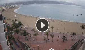 Medano beach Webcam Live